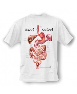 Camiseta Input Output